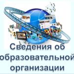Сведения об образовательной организации